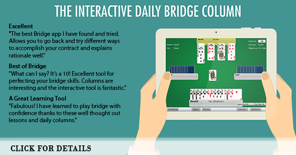 Interactive Daily Bridge Column